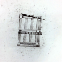 dessin contemporain - art - artiste